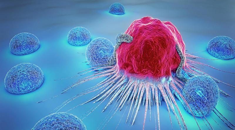 هر آنچه درباره ایمنی درمانی سرطان باید بدانید!